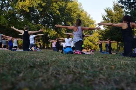 women performing yoga on green grass near trees