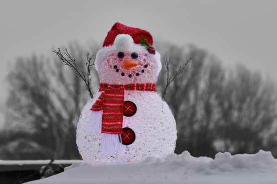 close up photography of snowman